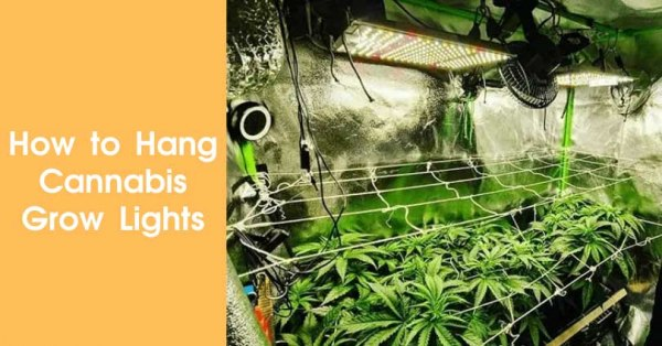 How to Hang Cannabis Grow Lights Featured Image