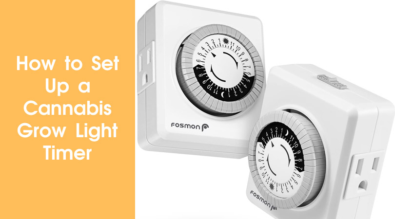 How to Set Up a Cannabis Grow Light Timer Cover Photo