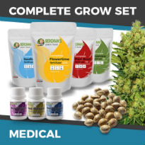 ILGM's Grow Kit - Medical