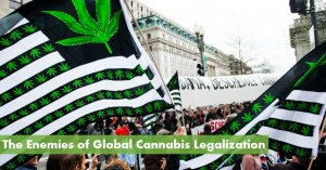 The Enemies of Global Cannabis Legalization