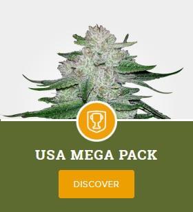 USA Mega Pack by MSNL