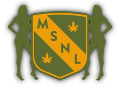 MSNL Logo