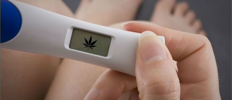 Marijuana Use and Pregnancy