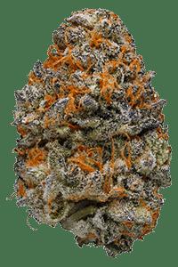 Mendo Breath Weed Bud