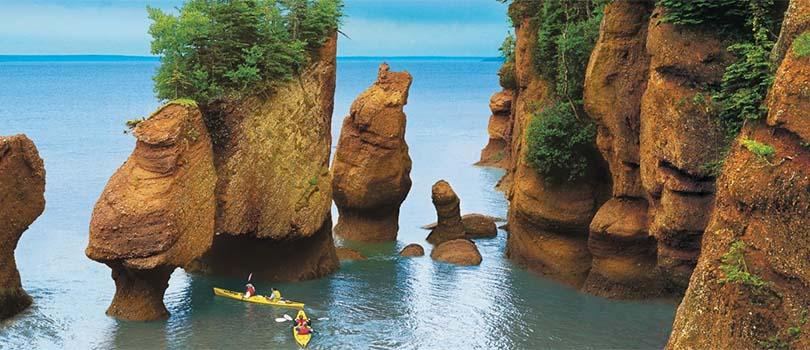 New Brunswick Nature