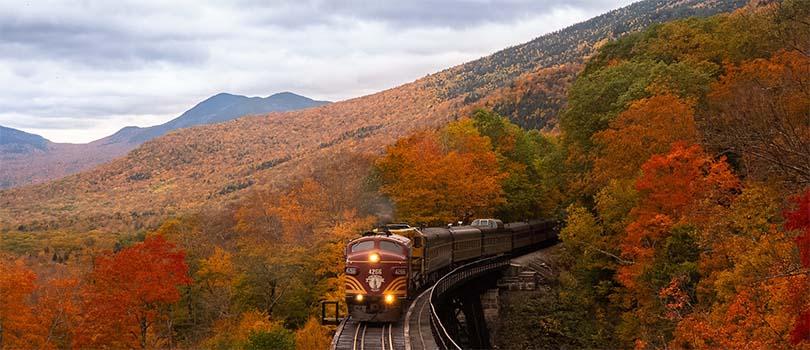 New Hampshire Nature
