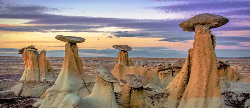 New Mexico Stunning Nature