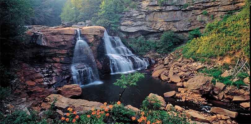 Pennsylvania Nature