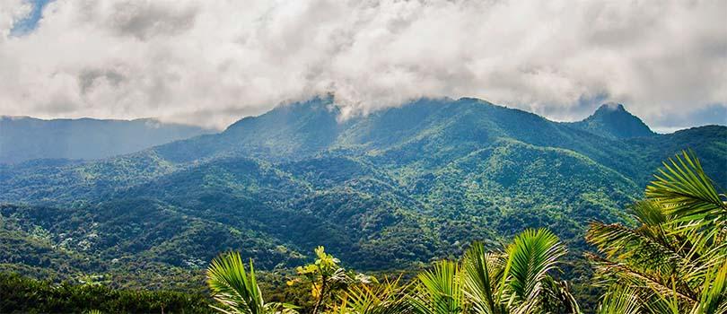 Puerto Rico Nature