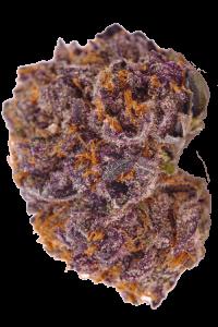 Purple Kush Seeds Bud