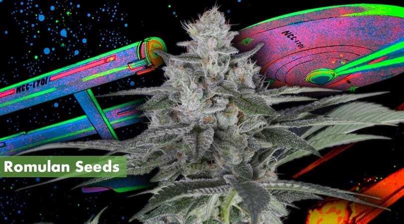 Romulan Seeds Cover Photo