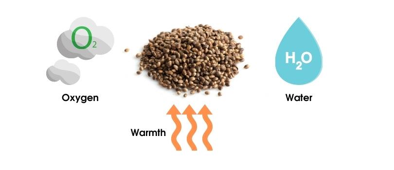 Seed Germination Chemistry