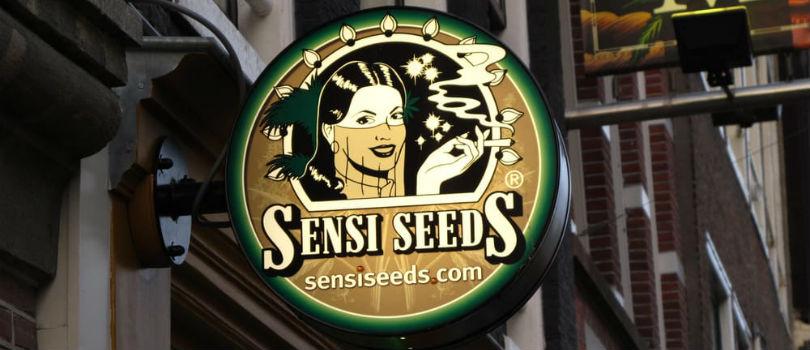Sensi Seeds Seedbank