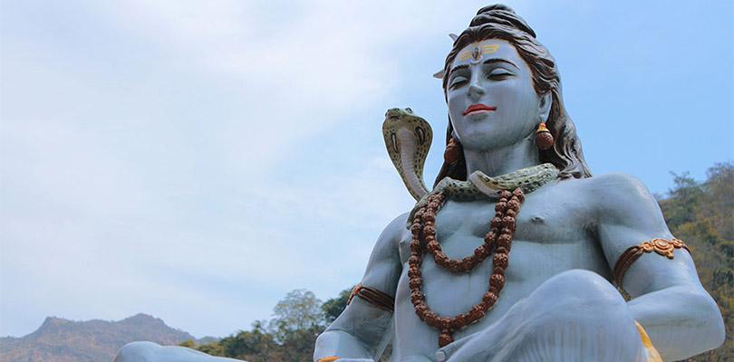 Shiva Bhang Cannabis