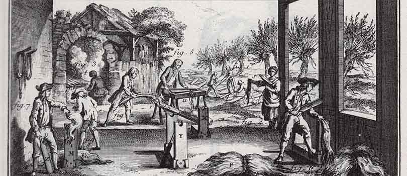 South Carolina 18th century hemp farming