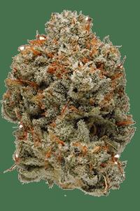 Super Glue Weed Bud