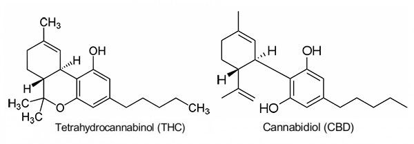 THC and CBD Molecule Structure