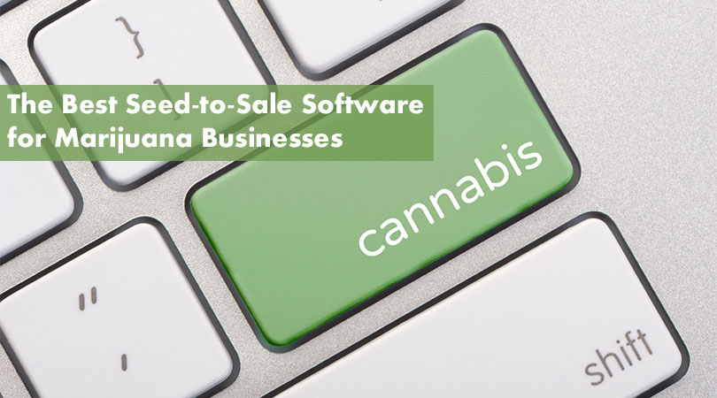 The Best Seed-to-Sale Software for Marijuana Businesses Cover Photo 2