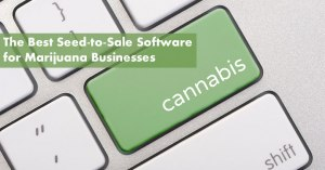 The Best Seed-to-Sale Software for Marijuana Businesses Featured Image