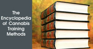 The Encyclopedia of Cannabis Training Methods Featured Image