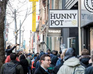 The Hunny Pot Dispensary, Toronto
