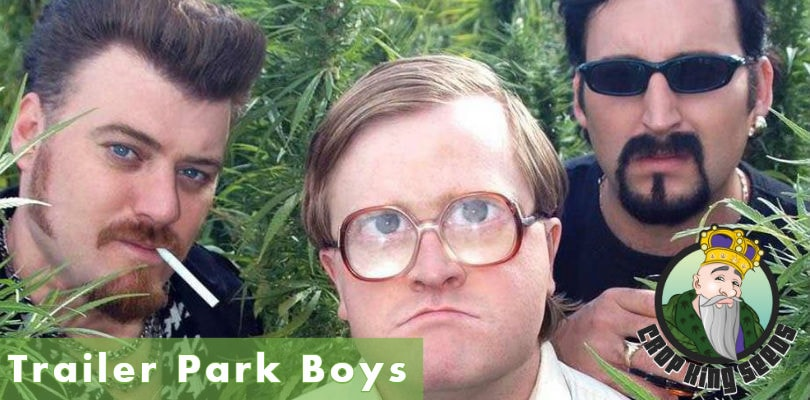 Crop king Seeds Trailer Park Boys