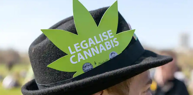 UK Cannabis CISTA