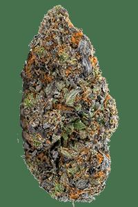 Wedding Crasher Weed Bud