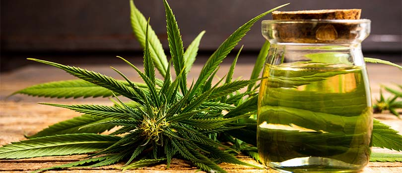 Weed Drink Health Benefits