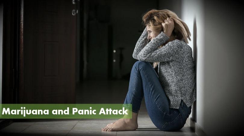 Marijuana and Panic Attack / Weed Panic Attack