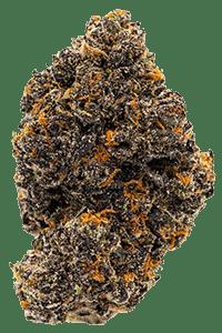 White Runtz Weed Bud