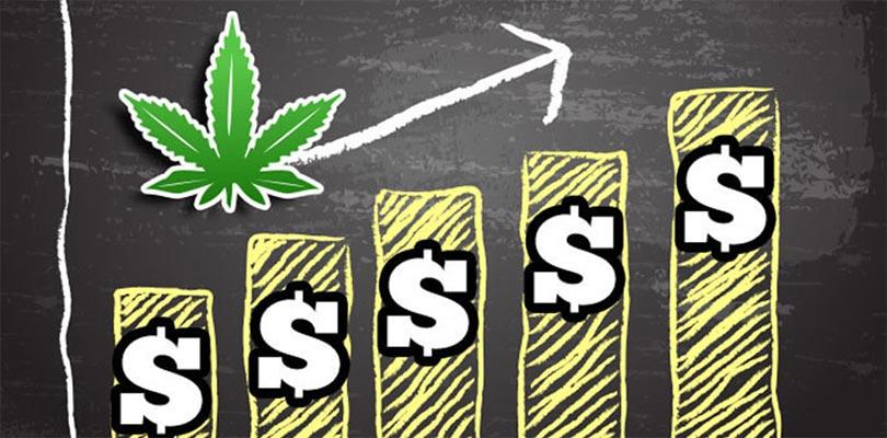 cannabis return on investment