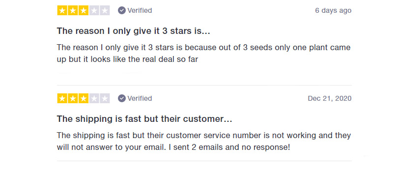 i49 Seedbank Customer Opinion